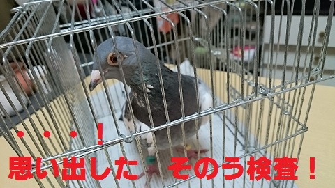 DSC_5709.jpg