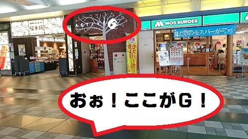 DSC_6632.jpg