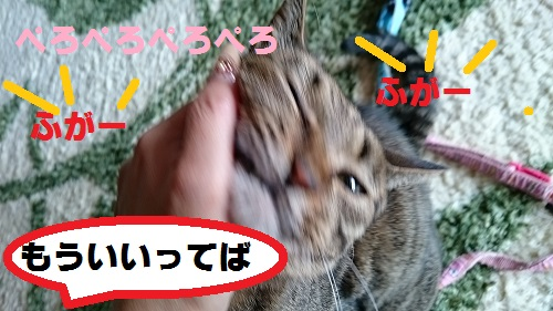DSC_6835.jpg
