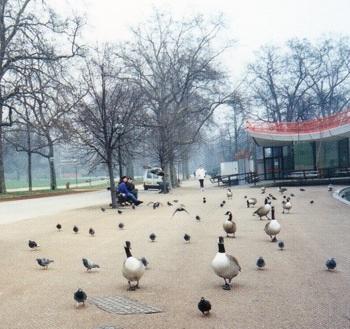 park 2b.jpg
