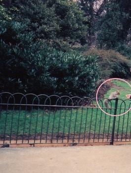 park 5e.jpg