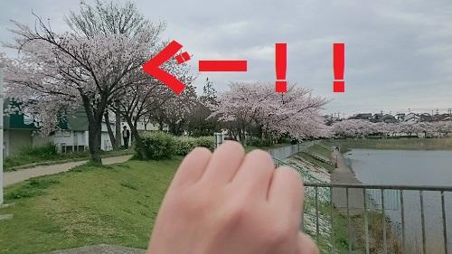 nekoatume5.jpg