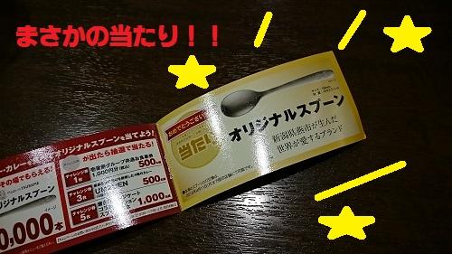 DSC_8449.jpg
