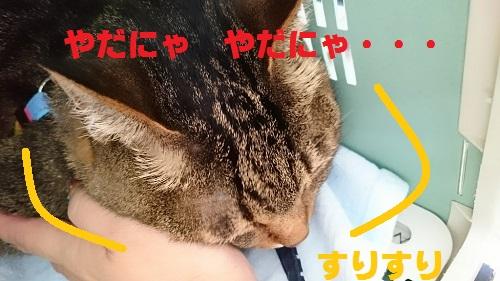 byouinn2.jpg